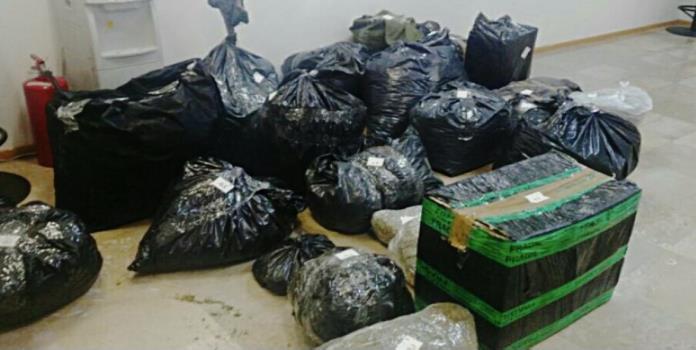 Incauta PGR 250 kilos de mariguana en Tepìto