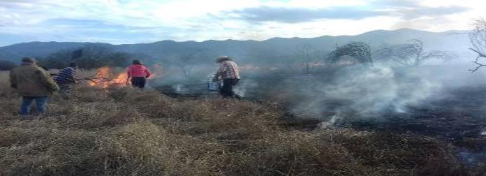 Fuerte incendio forestal