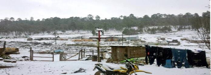 Reportan caída de nieve en 7 municipios de Durango