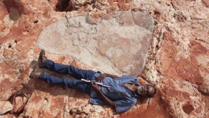 Hallan huellas de dinosaurio más grandes de la historia