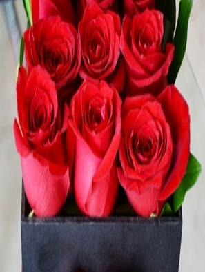 Ventas de flores sufren desamor