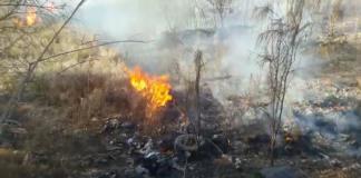 Se incendia pastizal