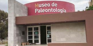 Destacan de Múzquiz riqueza paleontológica