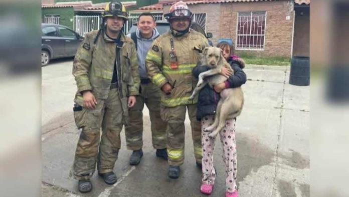 ¡Lo salvaron! Perrito es rescatado de un incendio por bomberos de Tijuana