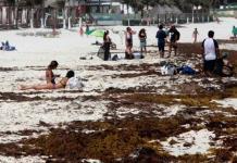 Sargazo se cuadriplica y amenaza con inundar al Caribe mexicano