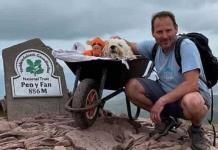 Perrito con cáncer pasea por última vez en su montaña favorita