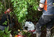 Localizan fosa con restos óseos en Cancún, Quintana Roo