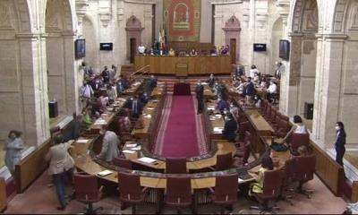 VIDEO: Una rata se cuela en sesión del Parlamento de Andalucía