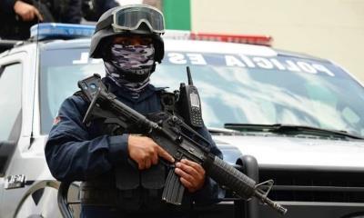 Continua el horror en Zacatecas; Encuentran cuerpos colgados en un árbol