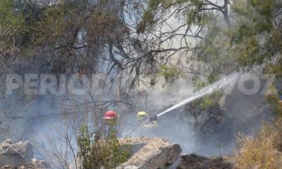 Incendio de hierba moviliza a Bomberos