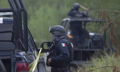 Tensa paz en Tamaulipas; Cártel Del Golfo llama a tregua entre facciones
