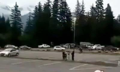 Activan alerta de tsunami por terremoto de 8.2 en Alaska