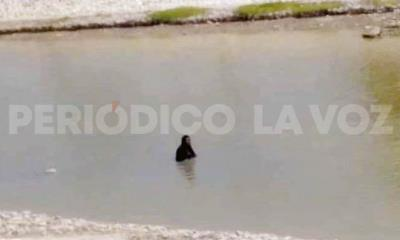 Se echa ´chapuzón´ en el río Monclova