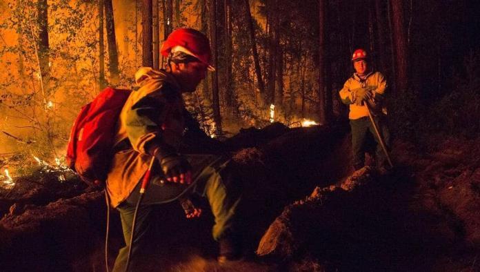 Humo tapa el sol; Intenso incendio se desata en Siberia