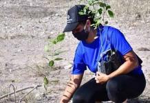 Se suma GIMSA a plantar árboles