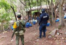 SEDENA desmantela Narco-laboratorio