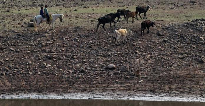 Emergencia por sequia; Conagua limita uso de agua en áreas afectadas