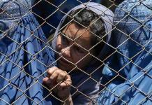 Empieza el éxodo; Países europeos cierran embajadas en Afganistán