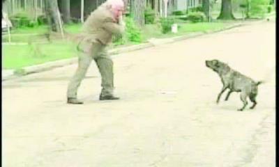 Muerde perro a abuelito