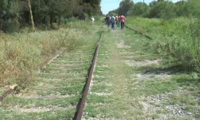 Reactivarán viajes en tren