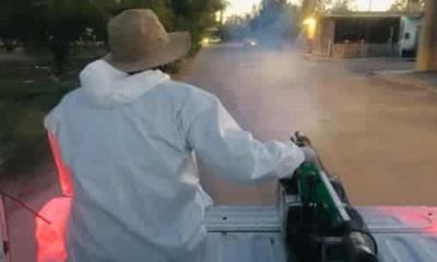 En Allende Intensifican la fumigación contra mosquito trasmisor