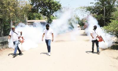 Detectan en Praderas dengue hemorrágico