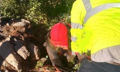 Rescatan Bomberos  a dos cachorros cayeron a un pozo de 15 metros