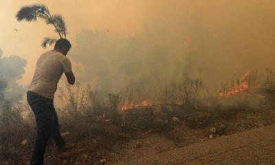 Siria ejecuta a 24 personas por haber provocado incendios en 2020